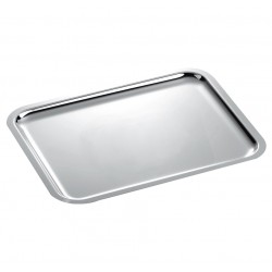 Rectangular Silver Trays